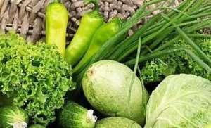 上海尝试种植无农药蔬菜